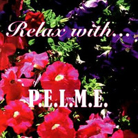 PELME - Relax With (80s Electronic Punk) LAST COPIES CD