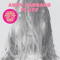 BUFFALO KILLERS- ANDY GABBARD  - Fluff (POWER POP with 60s aura) CD