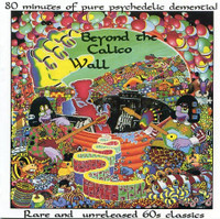 BEYOND THE CALICO WALL - V/A  Excellent acid-punk sampler! LAST COPIES! COMP LP