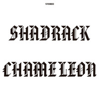 SHADRACK CHAMELEON - ST (1973 Midwest basement psych-rock private press ACID ARCHIVES FAVE !)  SALE! LP