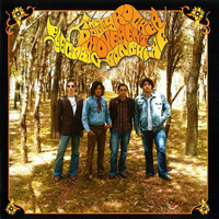DOLLY ROCKER MOVEMENT - ELECTRIC SUNSHINE (Aussie paisley psych)CD