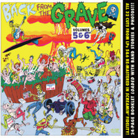 BACK FROM THE GRAVE - Vol 5 & 6 - With 24 page booklet - 60s Garage Punk - COMP CD