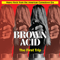 BROWN ACID  - THE FIRST TRIP (60S PSYCH RARITIES) -COMP LP