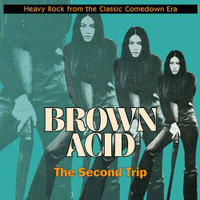 BROWN ACID  - THE SECOND TRIP (60S PSYCH RARITIES) BLACK  VINYL COMP LP
