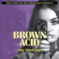 BROWN ACID  - THE THIRD TRIP (60S PSYCH RARITIES)  COMP LP