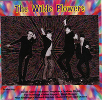 WILDE FLOWERS - ST (60s Brit pop) booklet packed w photos, cuttings& extensive sleeve notes -CD