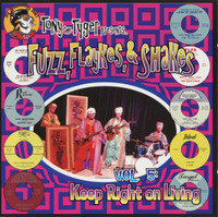 FUZZ,FLAYKES & SHAKES  Vol 5 Keep Right on Living (60s garage punk psych) COMP CD