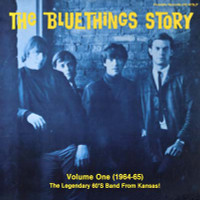 BLUE THINGS, THE  - Blue Things Story Volume One (60s pop psych) 180 GRAM  LP