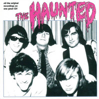 HAUNTED - ST  (Canadian 60s garage)2 LPS on one CD   CD