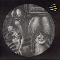 SHIVER  -Walpurgis (Renowned 60s Swedish Psych) HAND NUMBERED PIC DISC LP