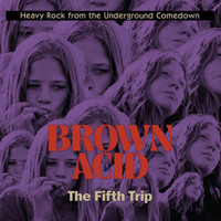 BROWN ACID  - THE FIFTH  TRIP (60S PSYCH RARITIES)COMP CD