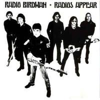 RADIO BIRDMAN - Radios Appear (1977 Scorching STOOGEs/MC5 style) 180 GRAM LP
