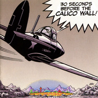 30 SECONDS BEFORE THE CALICO WALL   - VA  ( 60's  U.S. garage psych dementia) COMP CD