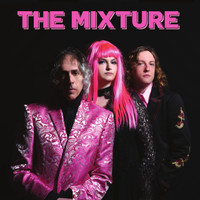 MIXTURE -The Perfect Relationship (ROCK AND ROLL w LENNY KAYE) CD