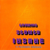 PSYCHEDELIC UNKNOWNS  Vol. 11  GROWING SLOWLY INSANE (legendary 60s garage psych)  COMP CD