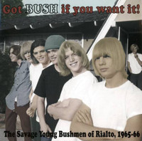 BUSH  - Got Bush if You Want it  (1965-66 Calif. Stones style)CD