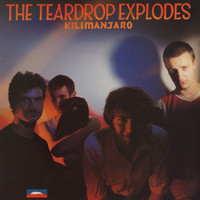 TEARDROP EXPLODES-Kilamanjaro   (GREAT BRITISH PSYCH POP)  CD