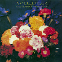 TEARDROP EXPLODES-Wilder(GREAT BRITISH PSYCH POP)CD