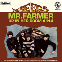 SEEDS -Mr FArmer  (60s garage)