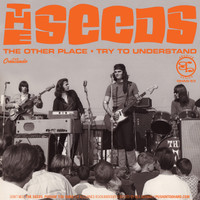 SEEDS   -THE OTHER PLACE (60s garage)  45 RPM