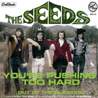 SEEDS  -YOU'RE PUSHING TOO HARD (60s garage)   45 RPM