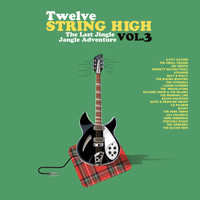 TWELVE STRING HIGH  Vol 3-Mind expanding tunes!  -  COMP CD