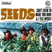 SEEDS   -CAN'T SEEM TO MAKE YOU MINE (60s garage) 45 RPM