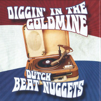 DIGGIN' IN THE GOLDMINE   - DUTCH BEAT NUGGETS (60s) 8 CD BOX SET with 201 tracks PLUS BOOK!!  COMP CD