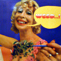 WEED   - ST (1971 Krautrock rarity repress W INSERT)   LP