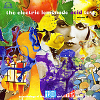 ELECTRIC LEMONADE ACID TEST  - VOL 2  (67-69 psych pop 1967-69) COMP LP