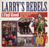 LARRY'S REBELS  - I Feel Good -The Essential Purple Flashes of Larry's Rebels 1965-1969   CD