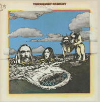 TURNQUIST REMEDY -IOWA BY THE SEA(Los Angeles 1970 CSN&Y style) CD