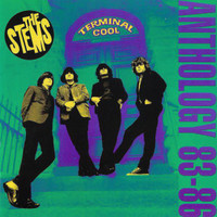 STEMS -Terminal Cool (83-86 gorgeous pop garage) CD
