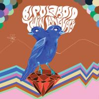 BIPOLAROID   - TWIN LANGUAGE (Barrett/Pink Floyd style neo psych)   CD