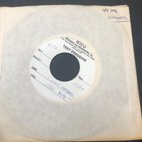 WOMBATS   - Bye Bye (VOXX 1006) ORIGINAL 1982 TEST PRESSING- ONE ONLY - 45 RPM
