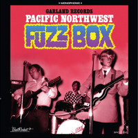 PACIFIC NORTHWEST FUZZ BOX   -VA  60s Garage-punk stompers from Salem's enigmatic Garland Records-  COMP CD
