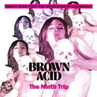 BROWN ACID   -THE NINTH   TRIP (HEAVY ROCK FROM THE UNDERGROUND COMEDOWN)-   COMP CD