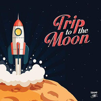 TRIP TO THE MOON   -11 OBSCURE R&B, GARAGE ROCK AND DEEPFUNK SONGS ABOUT THE MOON -  LP