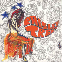 PAISLEY TREE   -ST(Led Zep/ Pretty Things style)CD