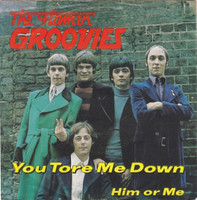 FLAMIN GROOVIES- You Tore Me Down   - PIC SLV ONLY!   45 RPM