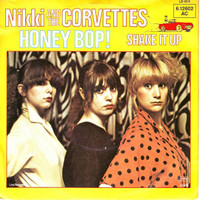 NIKKI AND THE CORVETTES  - MONEY Bop! (spelled wrong) with BOMP  slv 1979  ORIG pressing   45 RPM