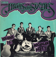 HIGHS IN THE MID 60's - Vol. 19  Michigan PART 3 -ARCHIVE COPIES! (60s rarities) COMP LP