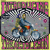 ACID LEMON  -INTRODUCING(Texas garage punk psych circa 1966)   CD