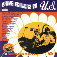BRING FLOWERS TO U.S  -20 Popsike Gems From U.S.A.  COMP CD