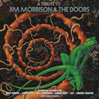 A TRIBUTE TO JIM MORRISON & THE DOORS  -Superb performances by a.o. Edgar Winter, Chris Spedding, Todd Rundgren, David Johansen and members of Deep Purple, Foreigner, Yes, Rainbow, Mountain, Moody Blues and EL! - COMP CD