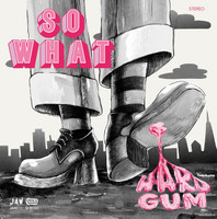 SO WHAT   - HARD GUM(modern garage glamrock take on '60 bubblegum pop)  LP