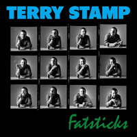 STAMP, TERRY  -FAT STICKS (1975 w Bowie, T REx and more!)  LP