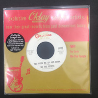 WE THE PEOPLE   -You burn Me Up and Down (66 garage)  45 RPM