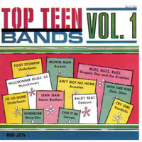TOP TEEN BANDS VOL 1  -60s GARAGE-  COMP CD