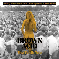 BROWN ACID -THE TENTH TRIP -HEAVY ROCK FROM THE UNDERGROUND COMEDOWN- COMP LP